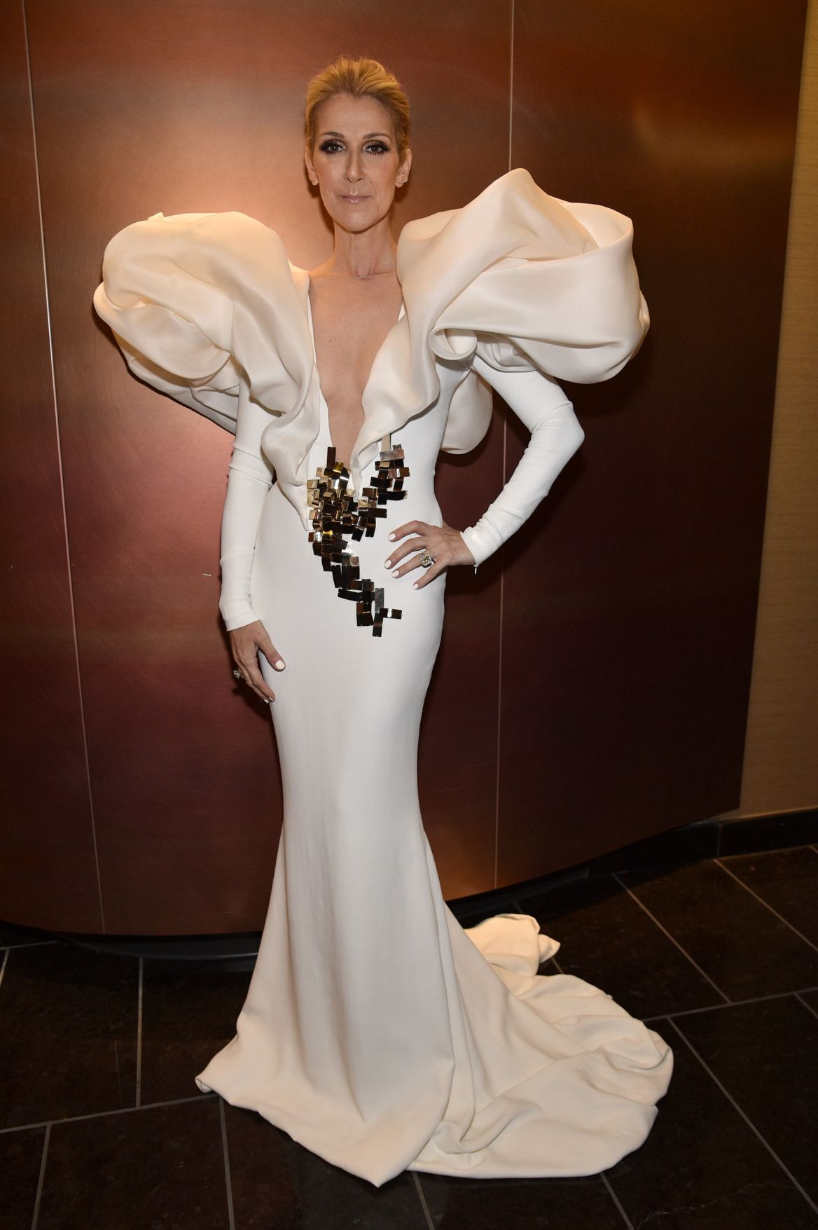 20 Celine Dion Wedding Dress Plus Size Dresses For Wedding Guest