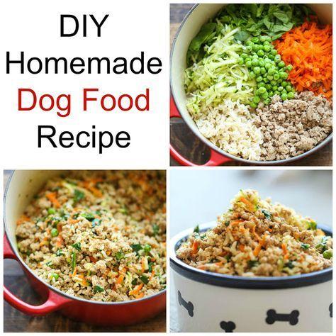 Diy Homemade Dog Food Recipe Dog Food Recipes Homemade Dog