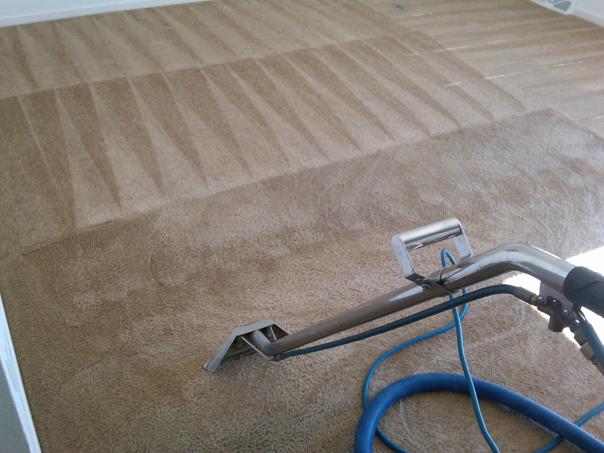 we make the difference in carpet cleaning http