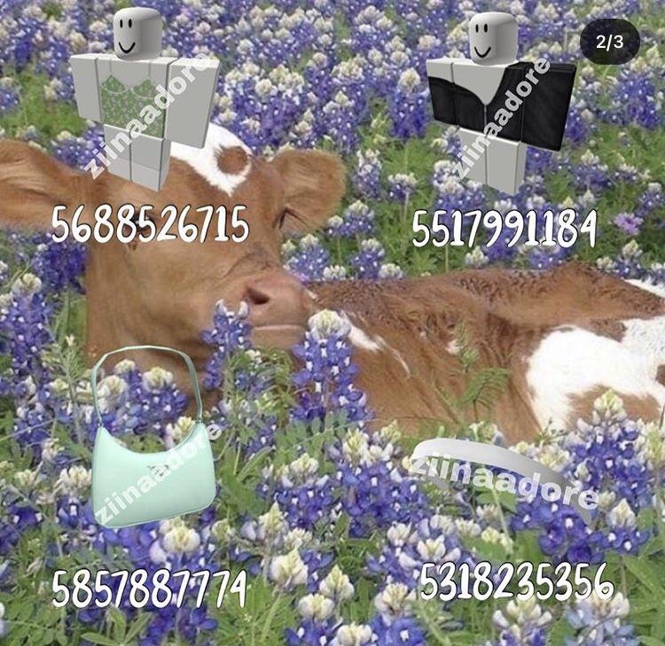 c3e99230fb723653d8977d31c6a9e145