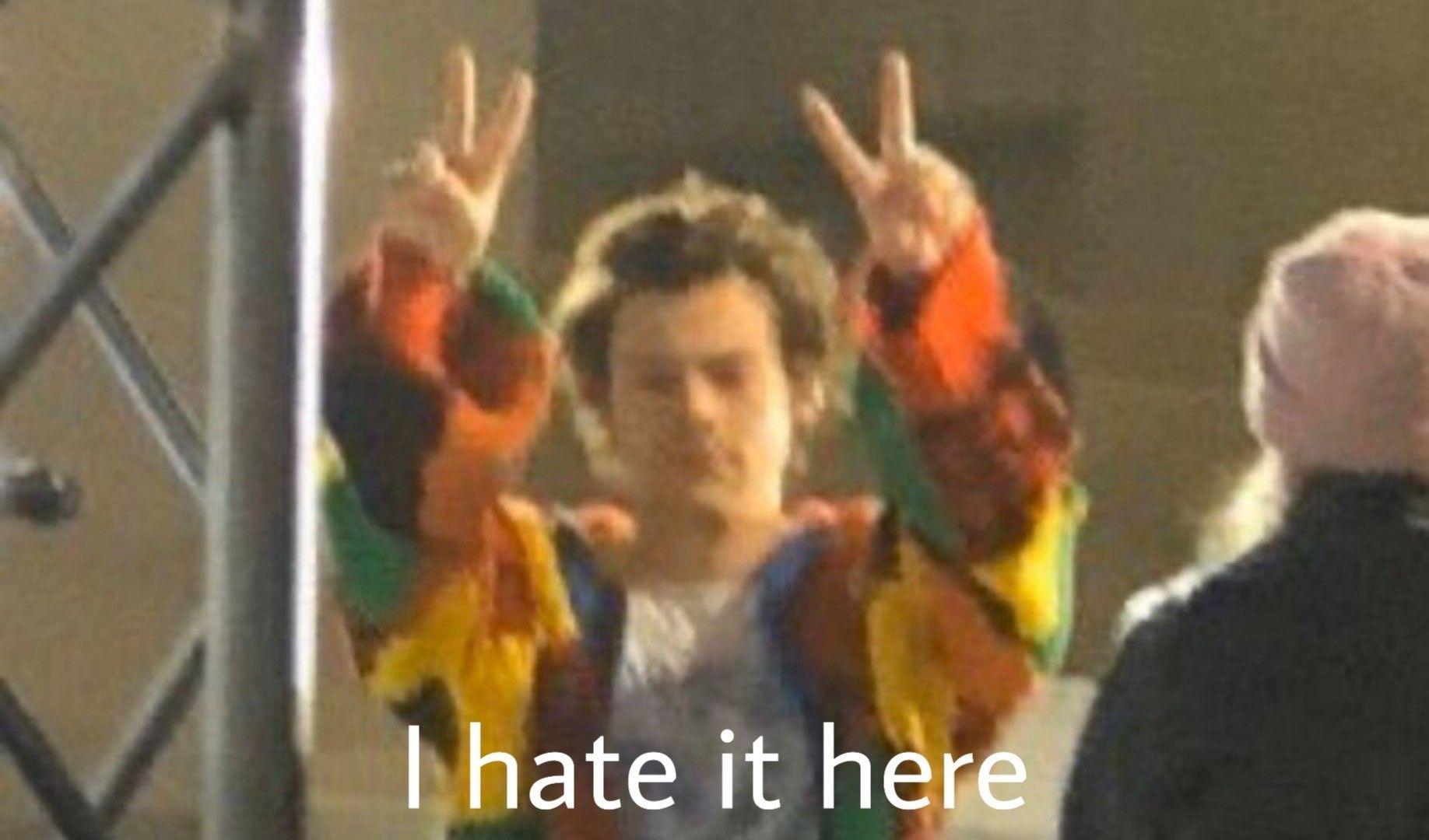 Harry Styles Meme In 2020 One Direction Memes Harry Styles Memes One Direction Humor
