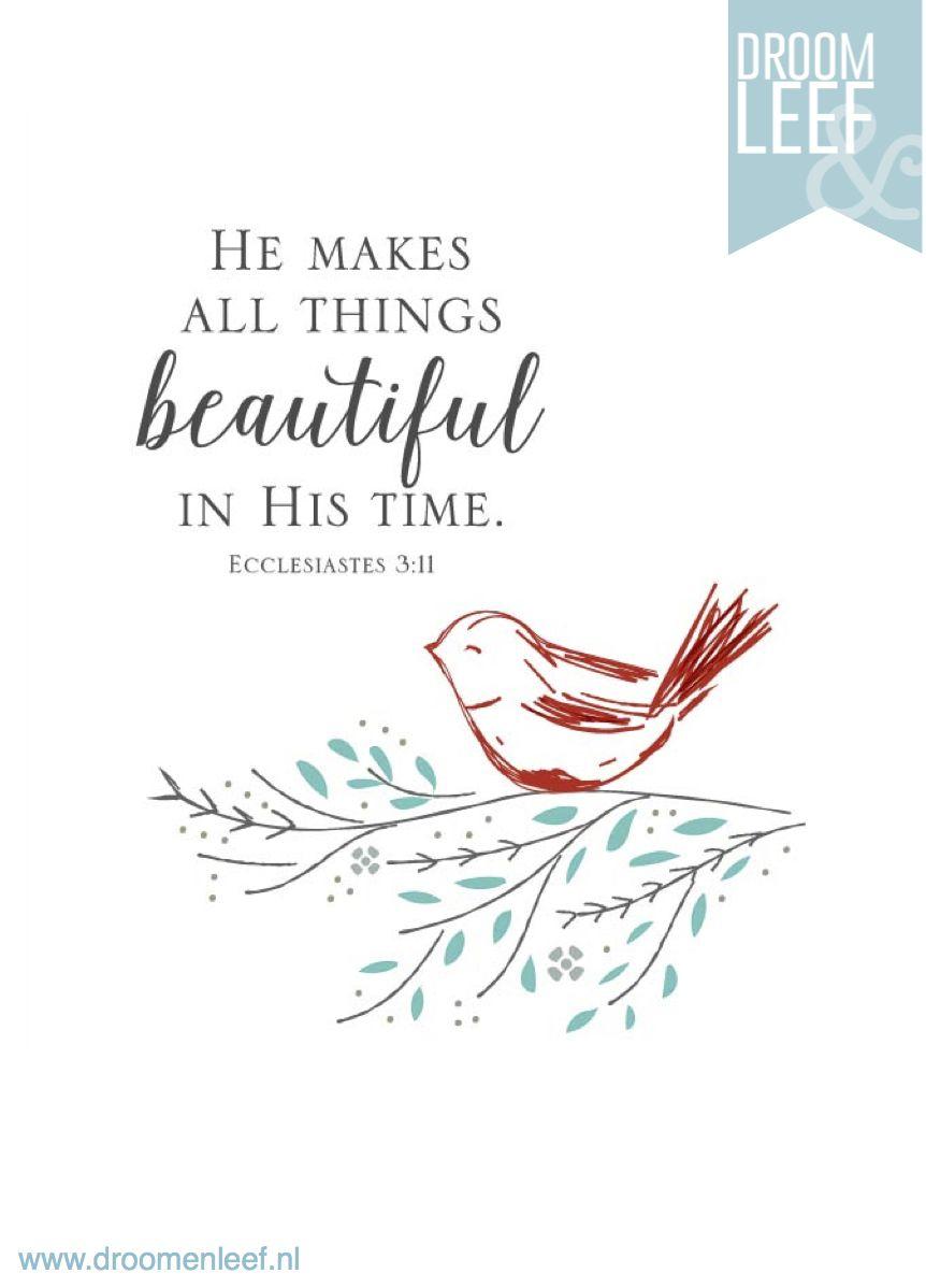 God zorgt ervoor dat alles op de juiste tijd gebeurt. Spreuken 3:11