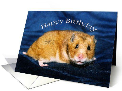Smiling Caramel Hamster Happy Birthday Card Happy Birthday Cards Hamster Birthday Cards