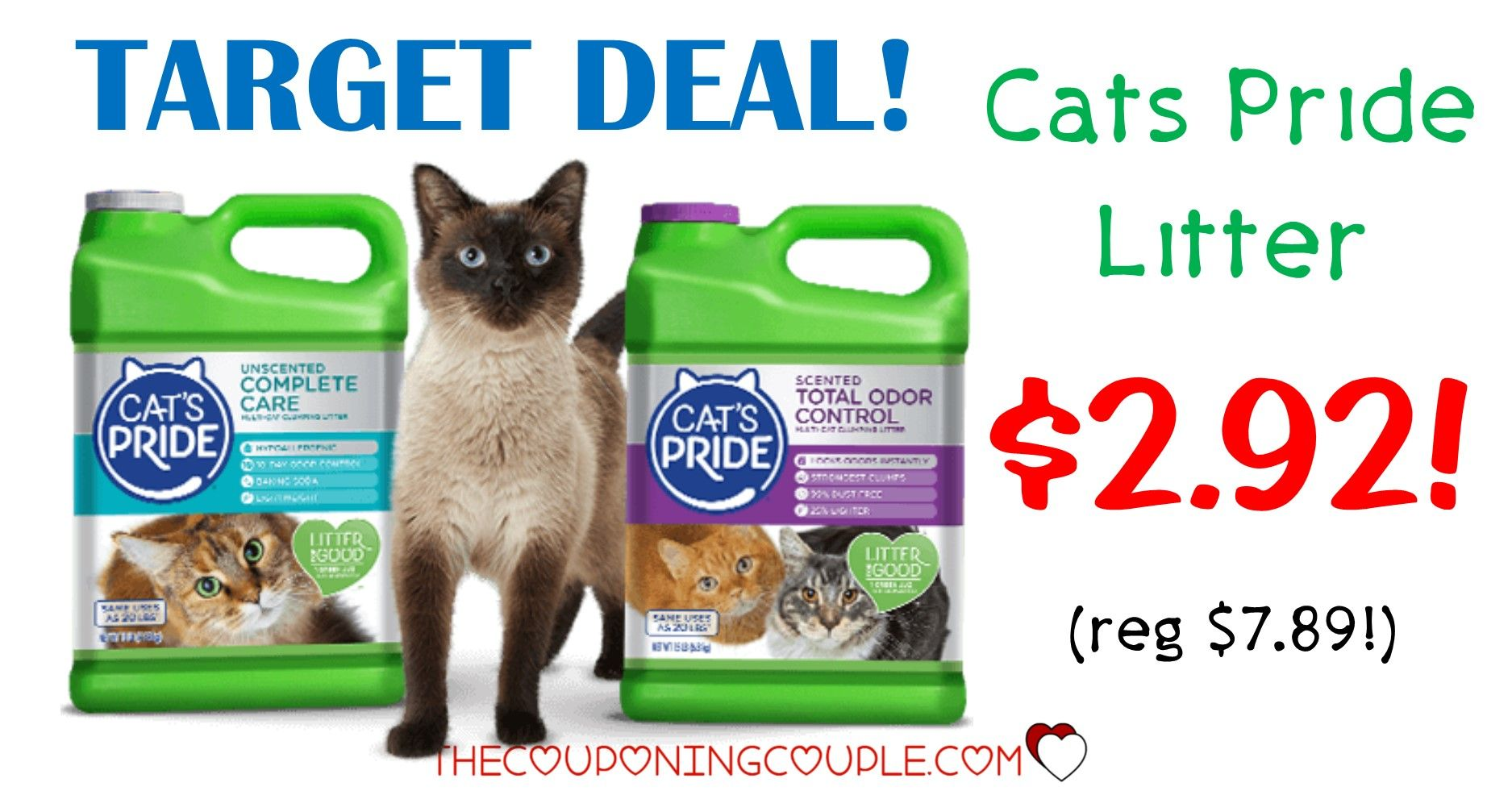Whiskas Dry Kitten With Chicken 340g Pack Of 6 Continue With The Details At The Image Link Catfo Cat Food Reviews Cat Food Allergy Food Coupons Printable