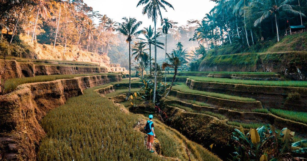 Menakjubkan 30 Contoh Gambar Ilustrasi Tentang Pemandangan Alam Wisata Alam Bali Pilihan Aktivitas Liburan Daftar Objek Di 2020 Pemandangan Bepergian Wisata Eropa