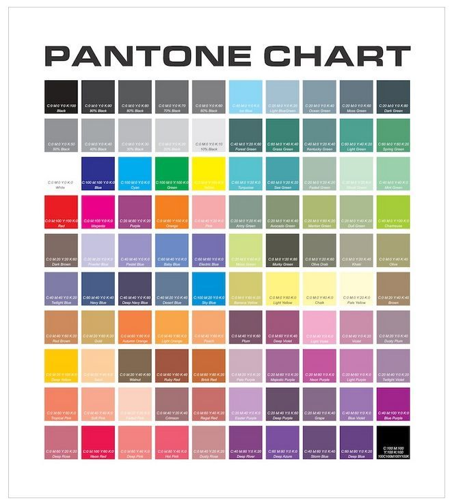 Pantone Color Chart  Art    Pantone Color Chart