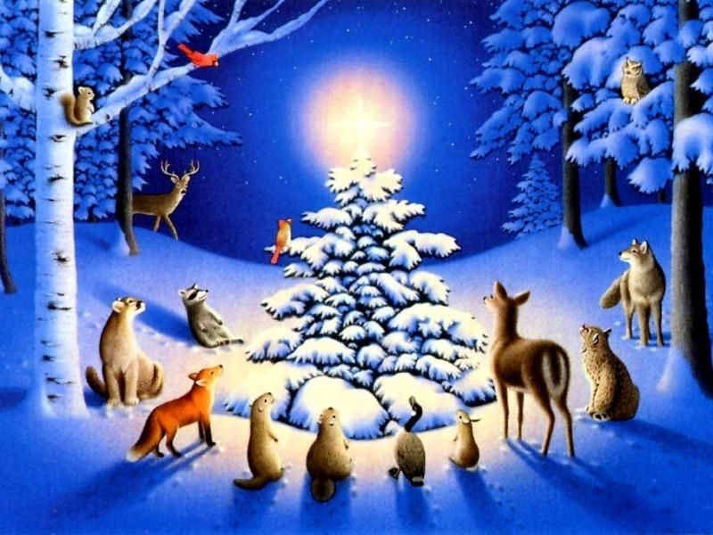 Image result for animals around a christmas tree