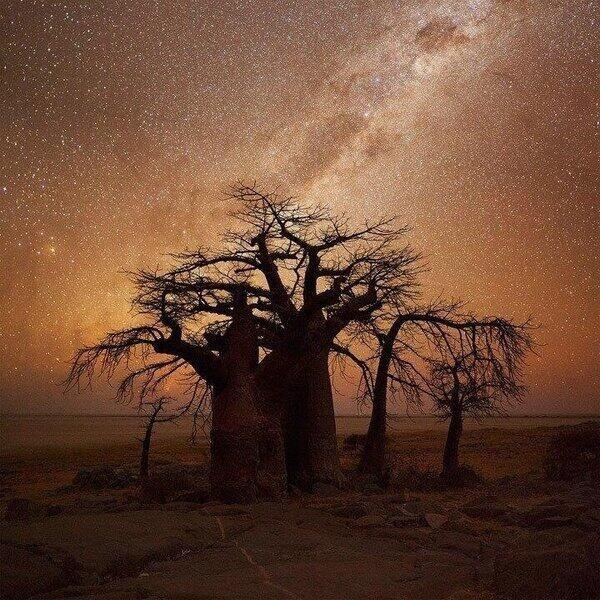 Caída de la noche en África.  magicoslugares @magicoslugares