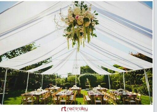 wwwplatinumeventrentals open frame canopy with chiffon draping chandeliers farm tables swoon - Open Canopy 2016