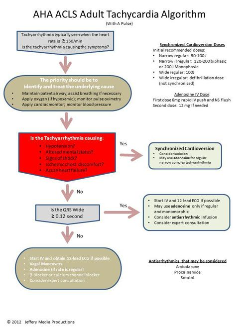 Tachycardia Algorithm | ACLS Algorithms | Medical | Pinterest ...