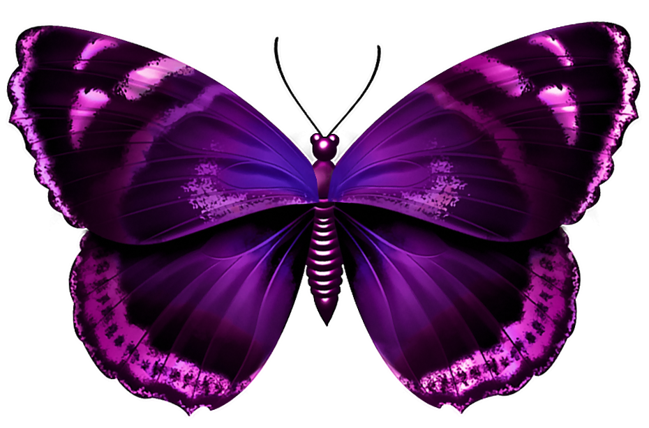 Purple Butterfly Transparent Png Image Png 930 614 Purple Butterfly Tattoo Purple Butterfly Beautiful Butterflies