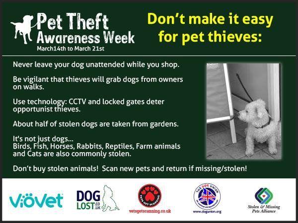 2 Pet Theft Awareness Week Twitter Search