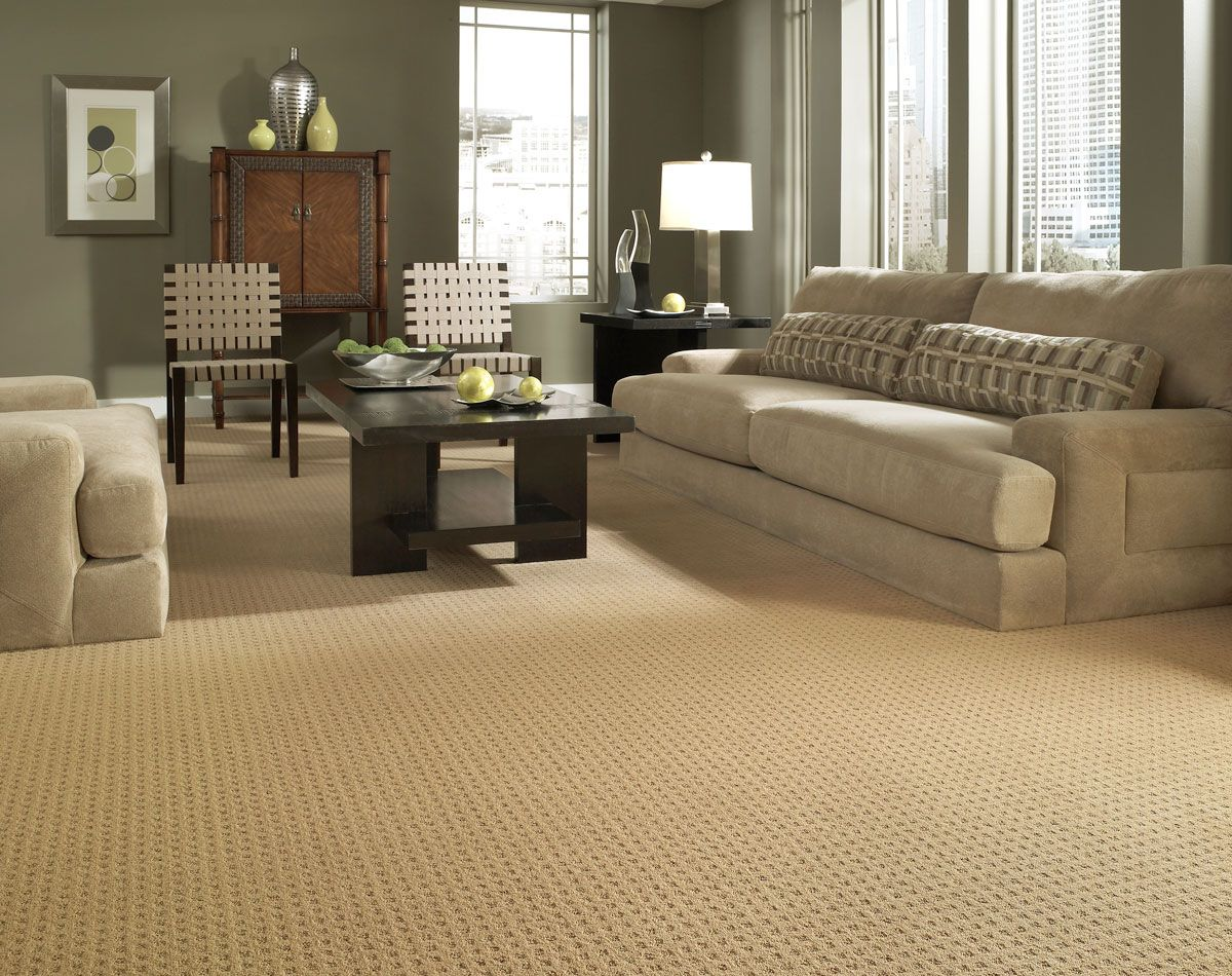 Mission Square Z6781 00223 Carpet Flooring Anderson Tuftex Textured Carpet New Home Buyer Home