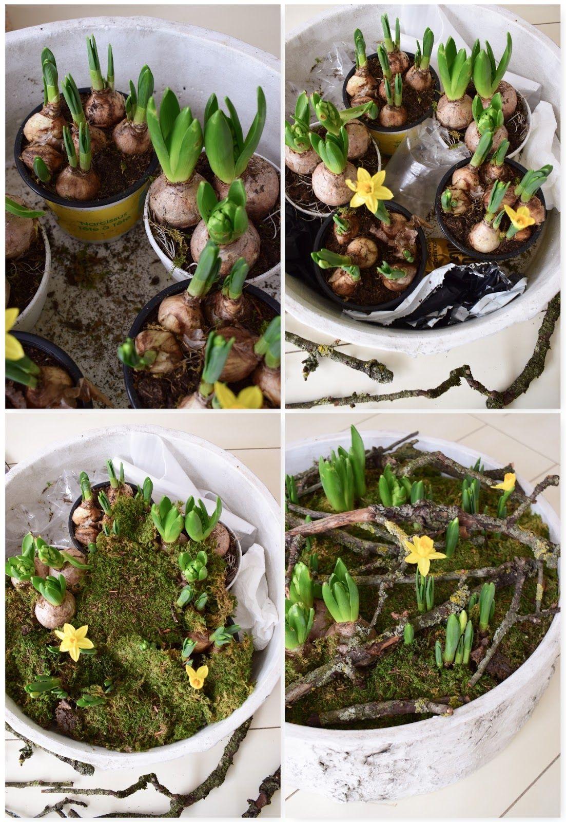 Der Frühling zieht ein: Frühlingsblüher und ganz viel Natur für euren Tisch – Mrs Greenery