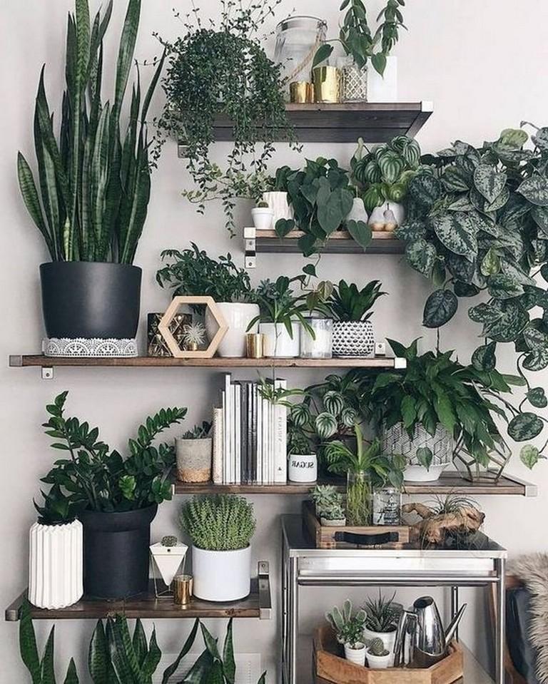 45+ Fresh Indoor Decorative Ideas With Plants #indoors # ...