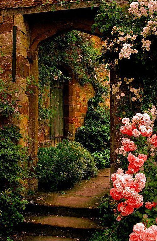 Great Cottage Landscape Yard Dream Garden Beautiful Gardens Secret Garden