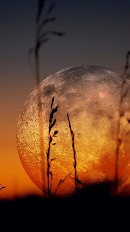 Pin by age on רקעים | Pinterest | Beautiful moon, Moon