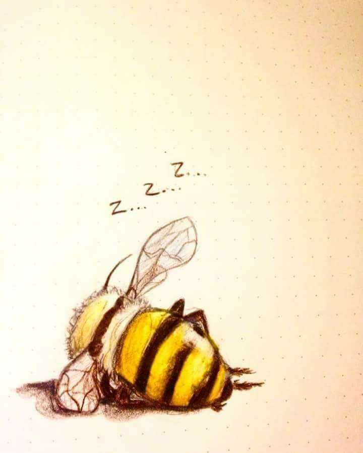 I love bees and everything they do. #diytattooimages