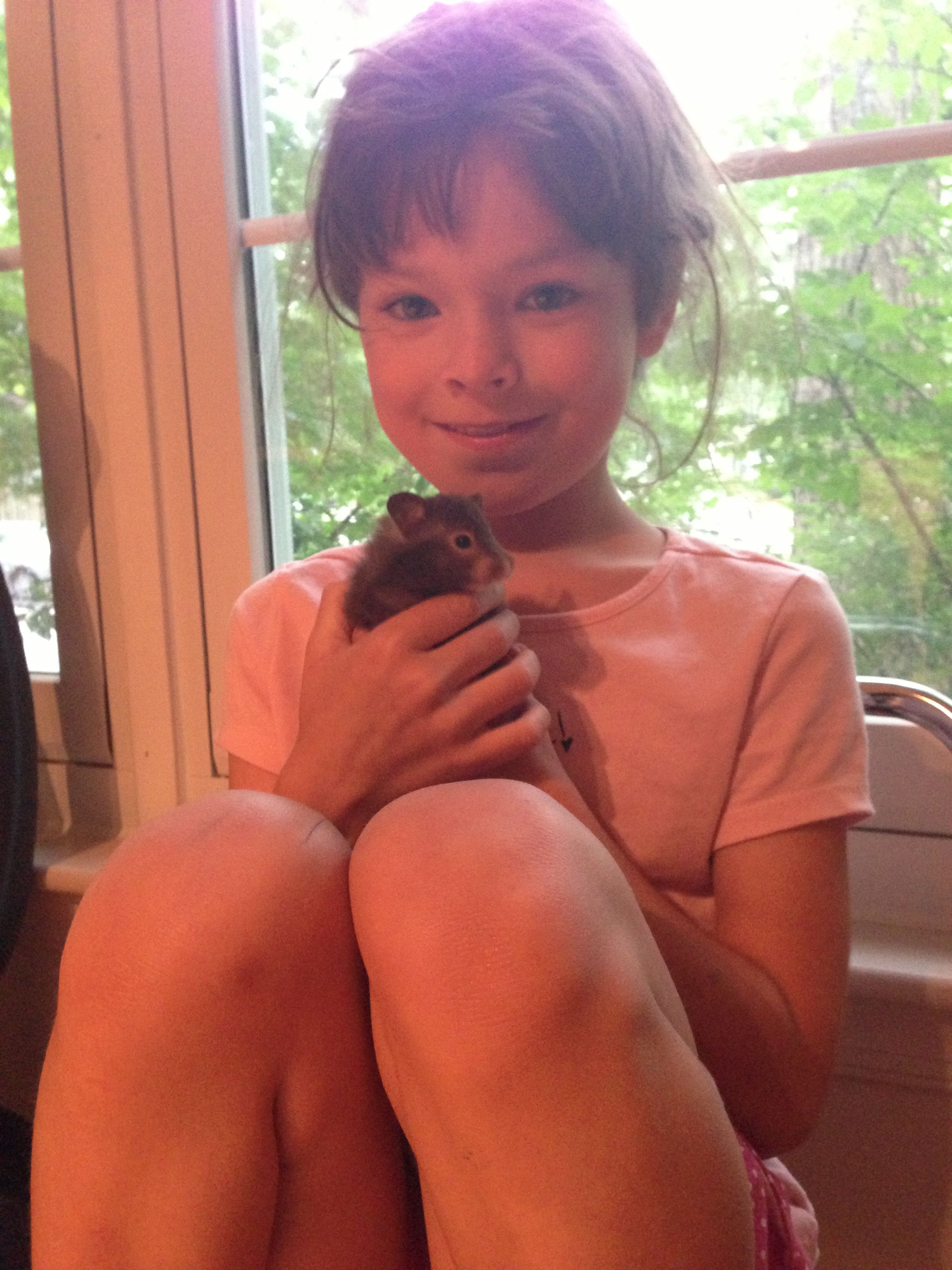 Alora is holding Elizabeth the teddy bear hamster