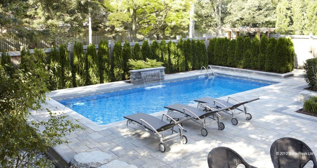 Image Result For Trees For Privacy Around Pool Backyard Ideas
