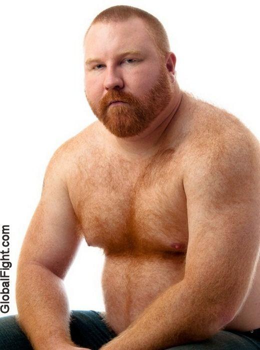 Ginger bear gay