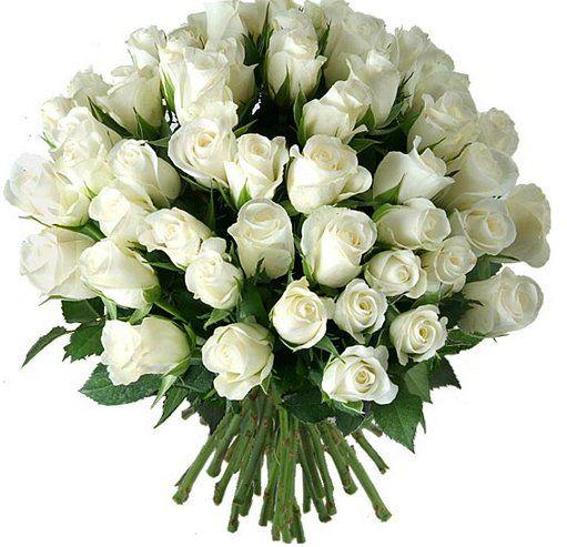 Imagenes De Ramos De Rosas Blancas Flores Pinterest Ramos - Imagenes-de-ramos-de-rosas-blancas