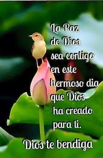 Pin De Teresa Salva En Buenos Dias Good Morning God Y Morning