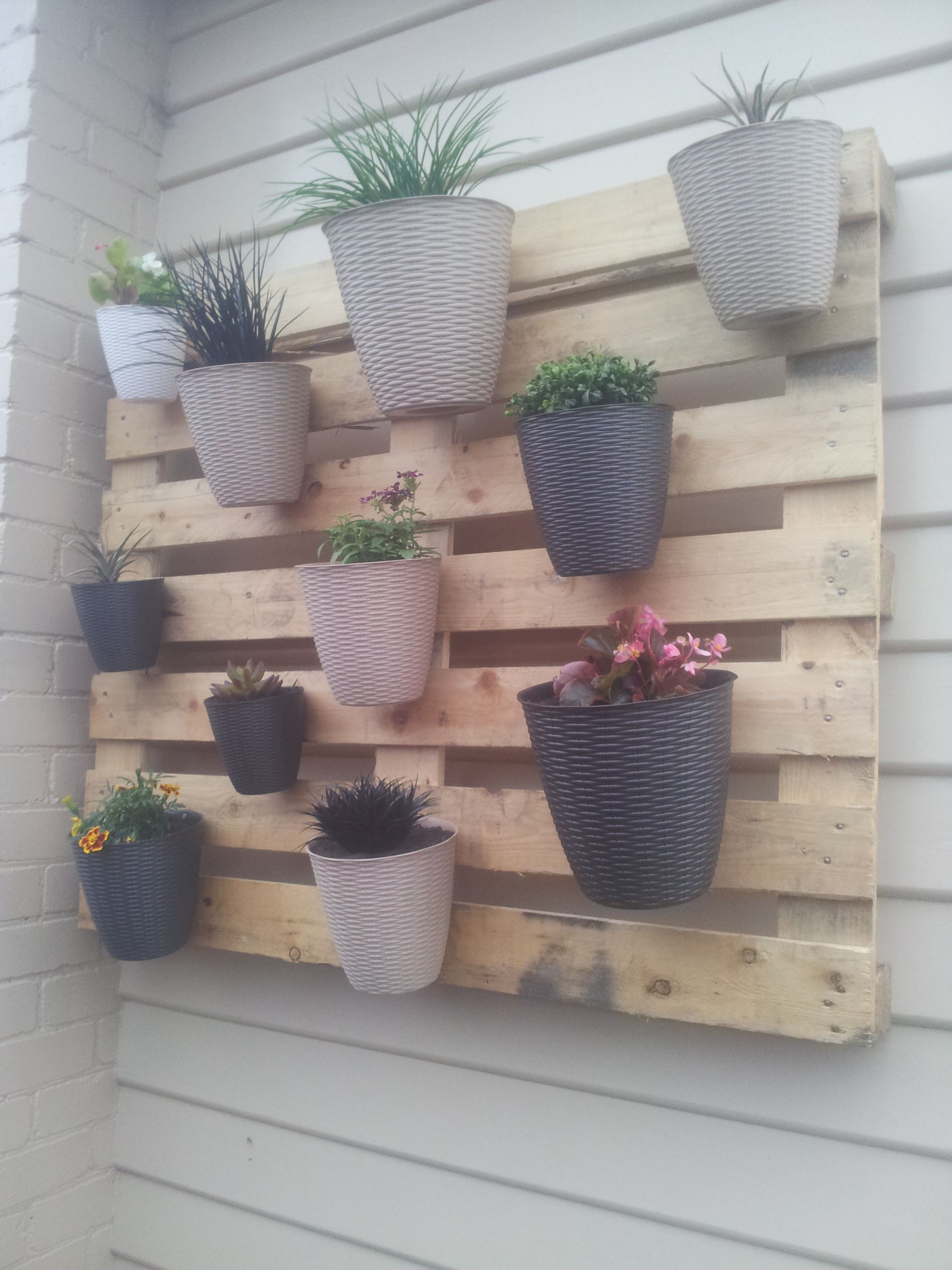 My first but not last pallet project a vertical garden - Jardin vertical pallet ...