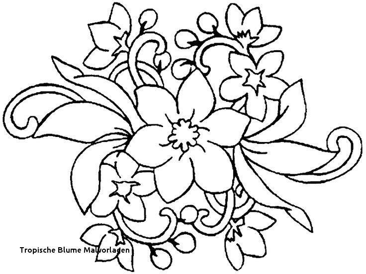99 Frisch Malvorlagen Blumen Rosen Fotos Blumen Ausmalbilder Malvorlagen Blumen Blumen Ausmalen