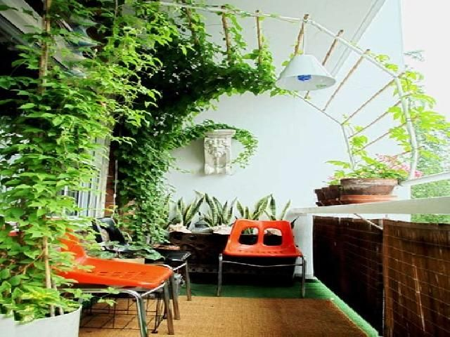 Explore Apartment Balcony Garden And More!