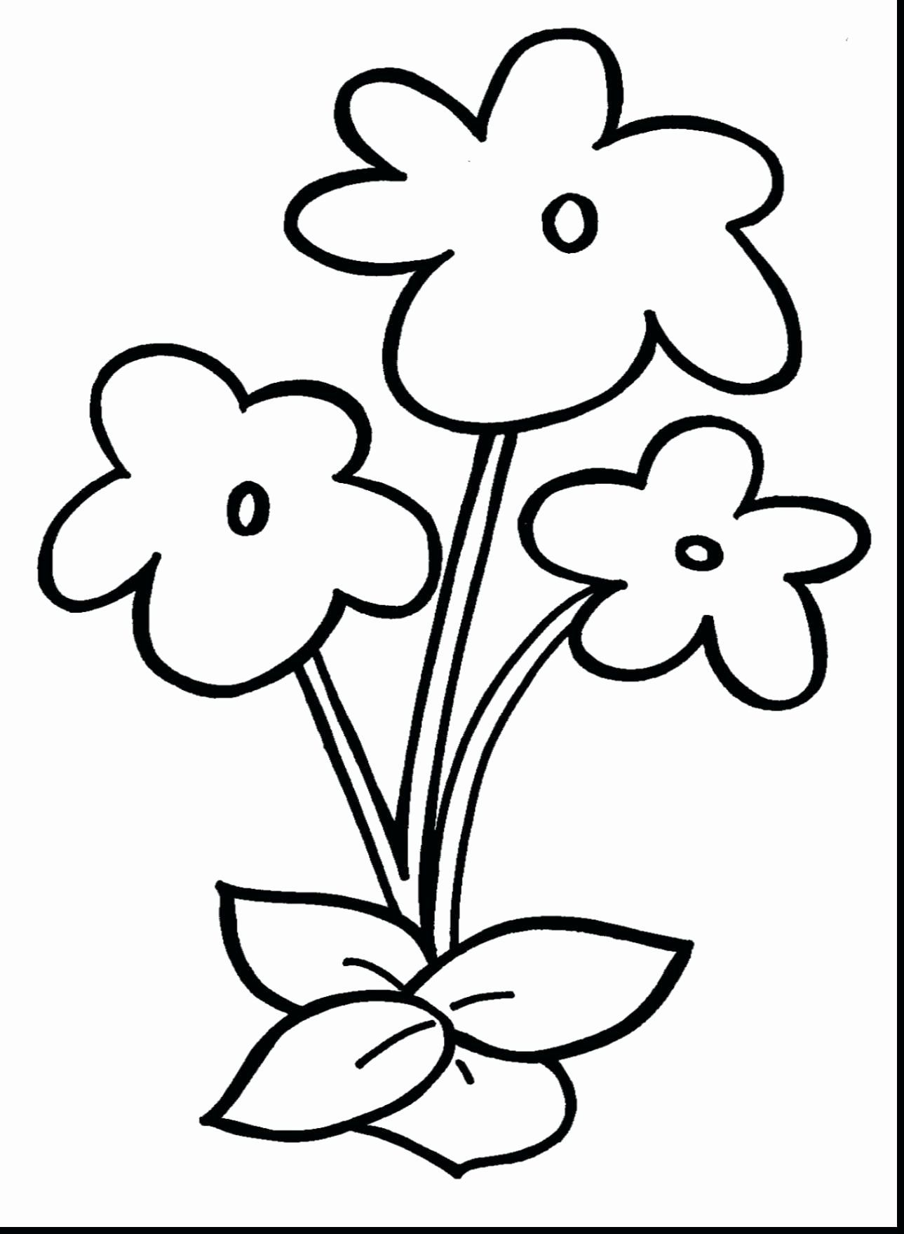 Simple Anatomy Coloring Pages Luxury Printable Daffodil Coloring