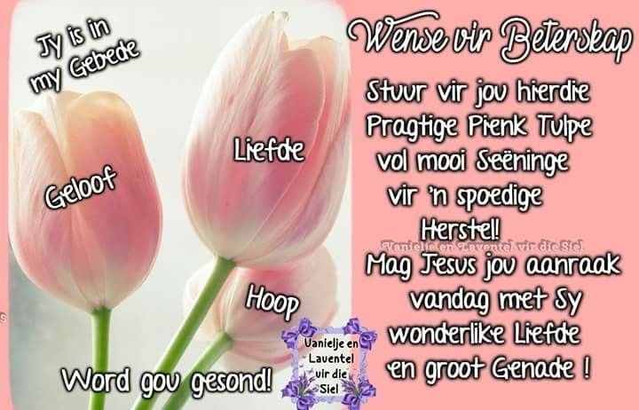Quotes Afrikaans Qoutes Dating Quotations True Words A Quote