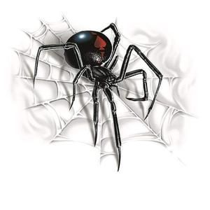 Black widow decal/spider decal/black widow/spider/bug decal/yeti/home decor/laptop/computer/spider sticker/black widow sticker