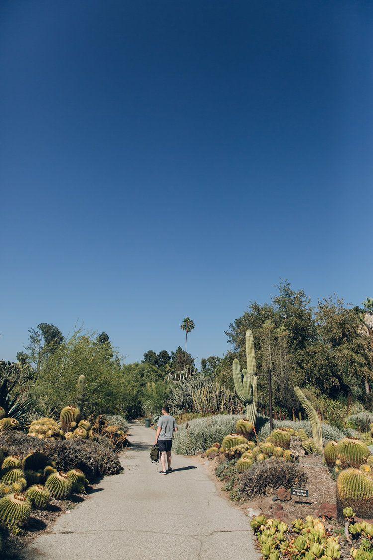 Desert Garden Near Los Angeles California Haarkon Adventures Desert Botanical Garden Birmingham Botanical Gardens Desert Garden