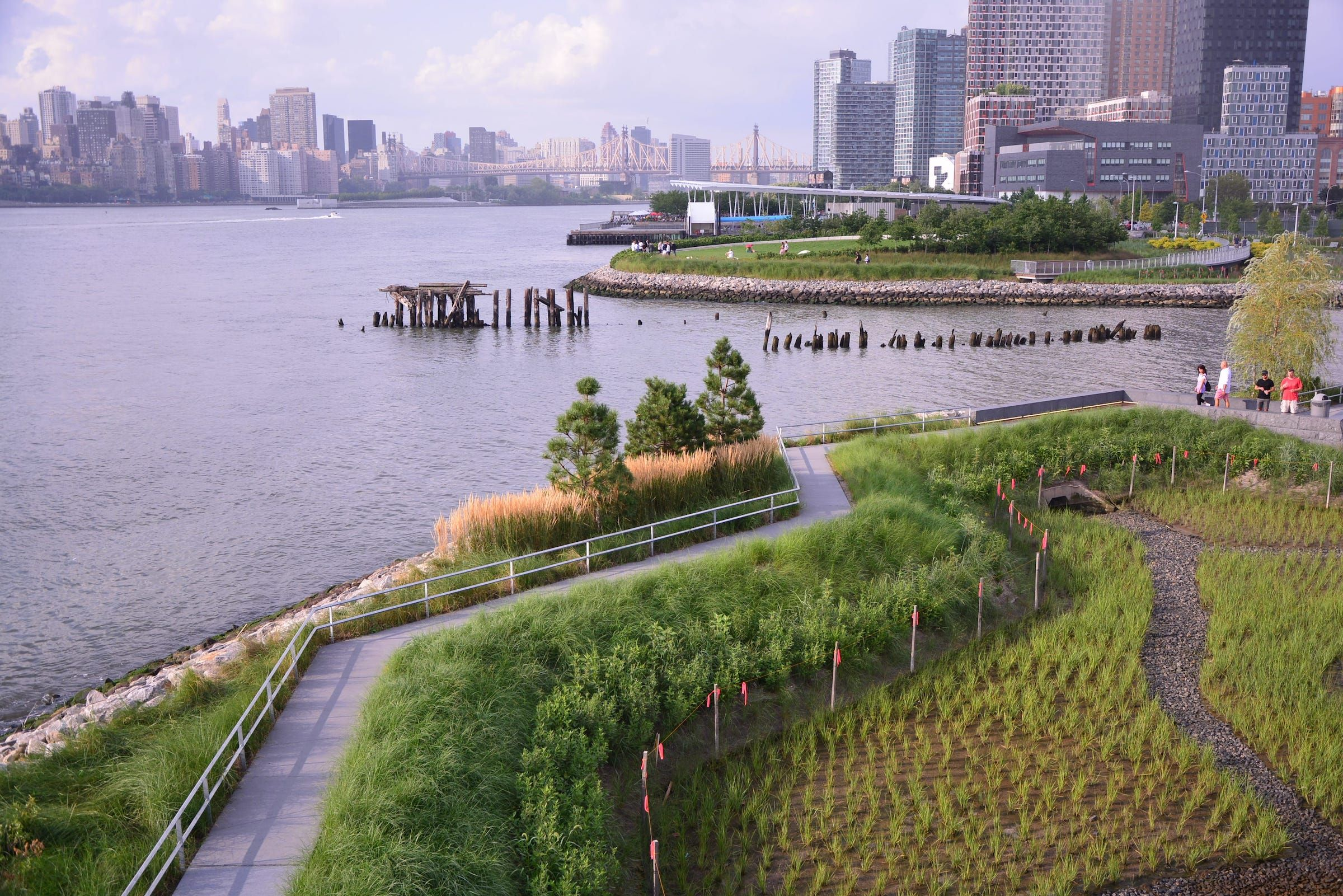 Hunter S Point South Waterfront Park Phase Ii By Swa Balsley Weiss Manfredi Mooool Urban Landscape Design Waterfront Landscape