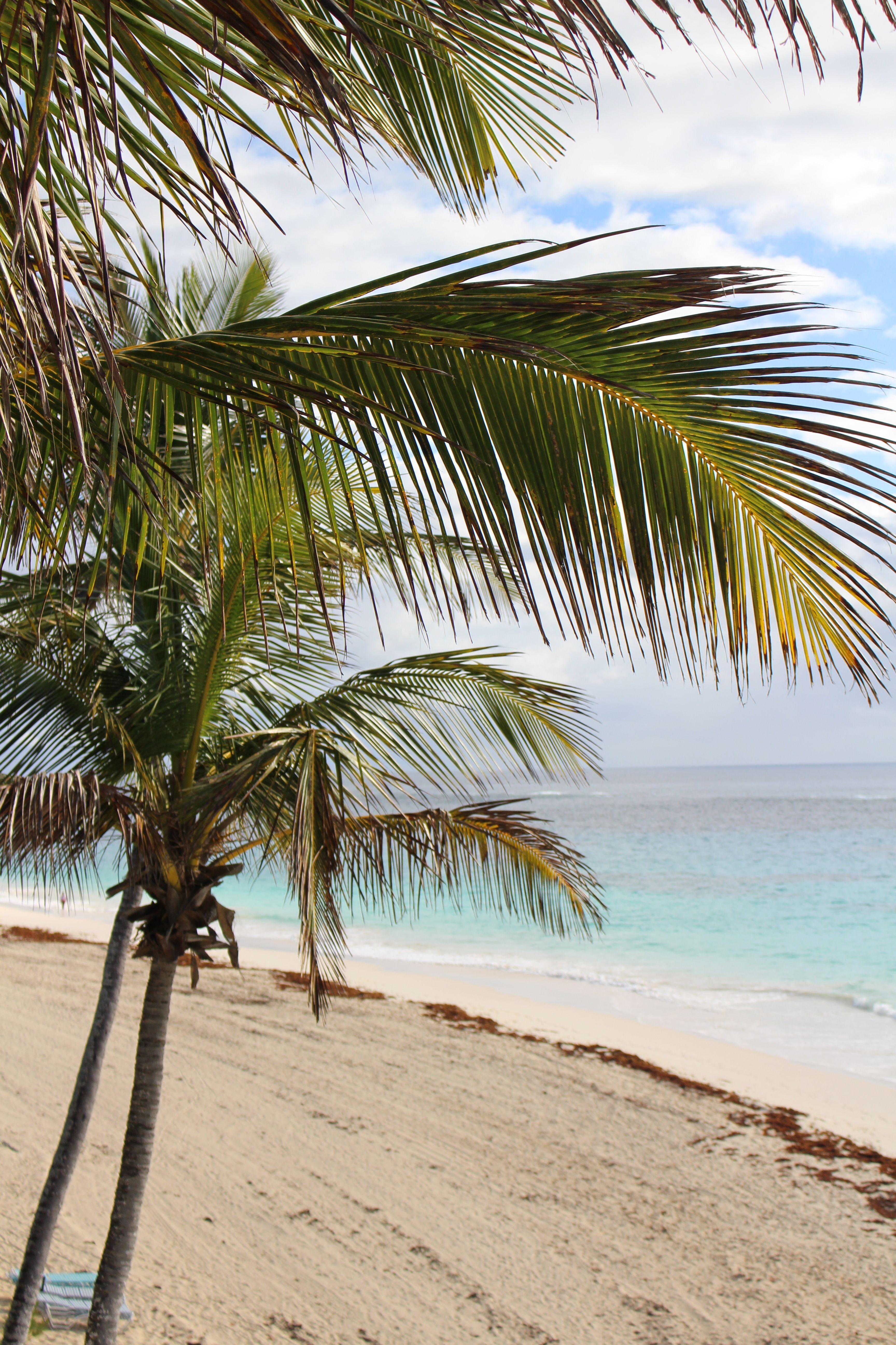 Beautiful Bermuda Beaches