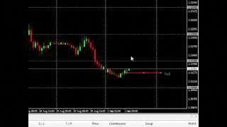 How to use options in forex