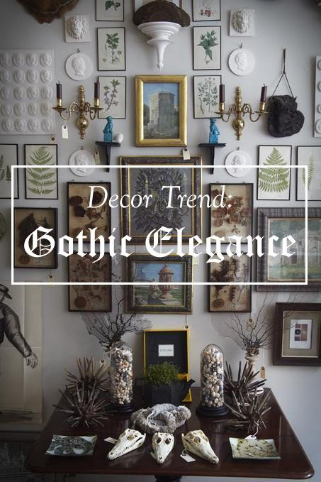 With black walls trending in home decor, the latest designs are giving off a dark and moody vibe. The look is being paired with vintage pieces that look like the're straight out of a Victorian curiosities cabinet.