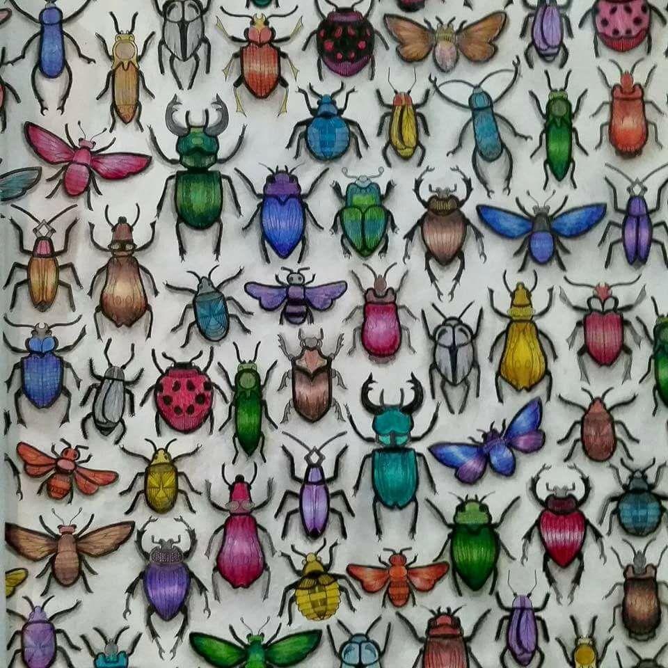 Secret Garden Besouros Jardim Secreto Johanna Basford Adult ColoringColoring BooksBeetlesJohanna
