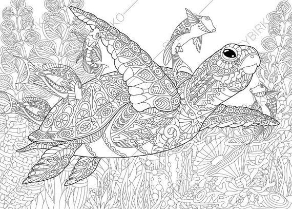 Adult Coloring Page Sea Turtle Zentangle By ColoringPageExpress