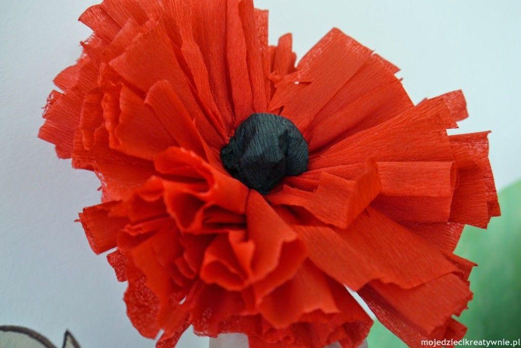 Kwiaty Z Bibuly Diy Moje Dzieci Kreatywnie Paper Flowers Paper Flowers Diy Handmade Flowers