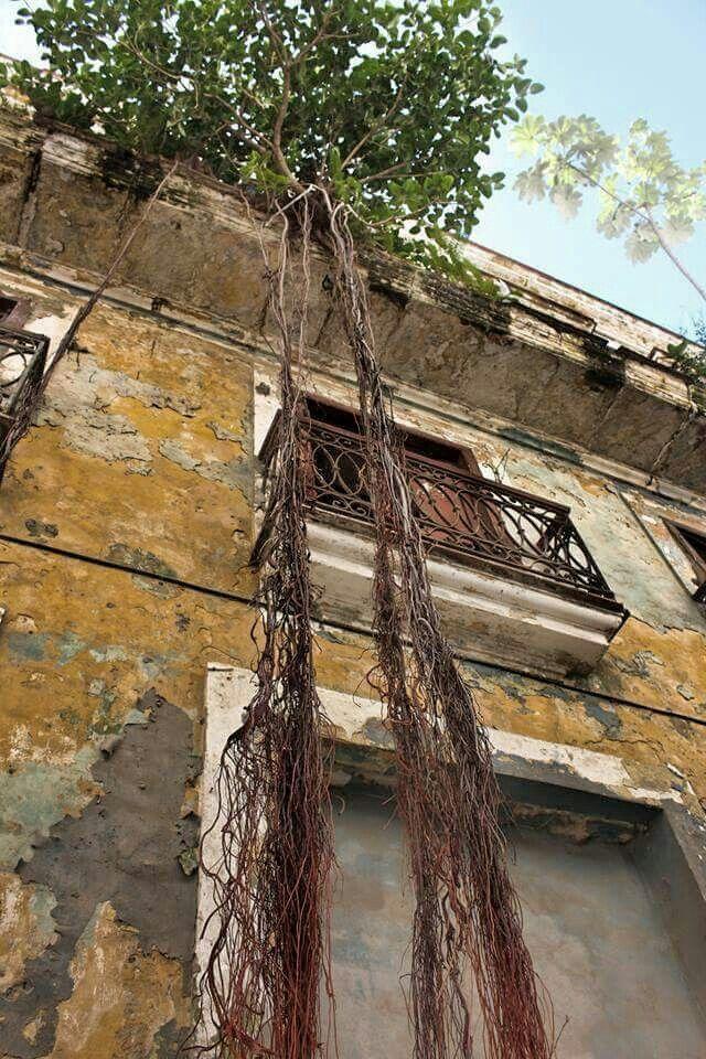 Cuba entre triste y bella dolida y amordazada toca tiempos de cambios de dejar que fluya no mas bloqueos