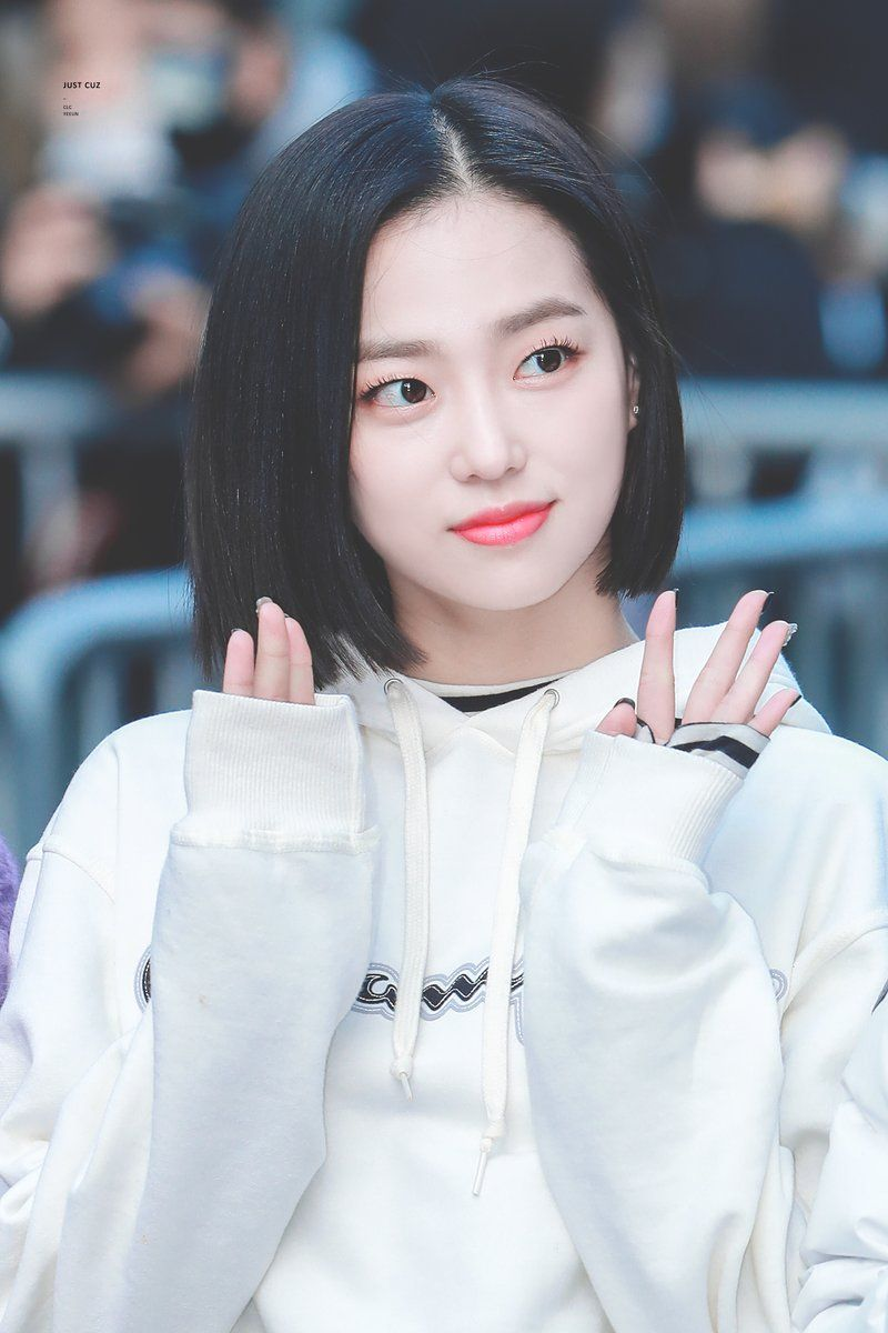 1 Twitter Coreana