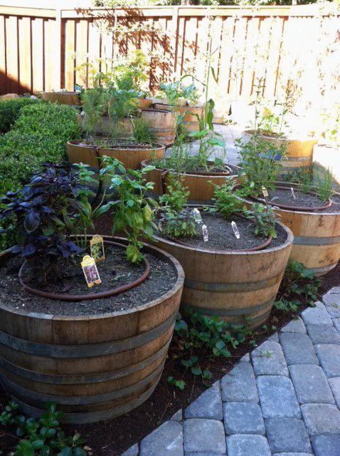 Raised Bed Gardening In Phoenix Area