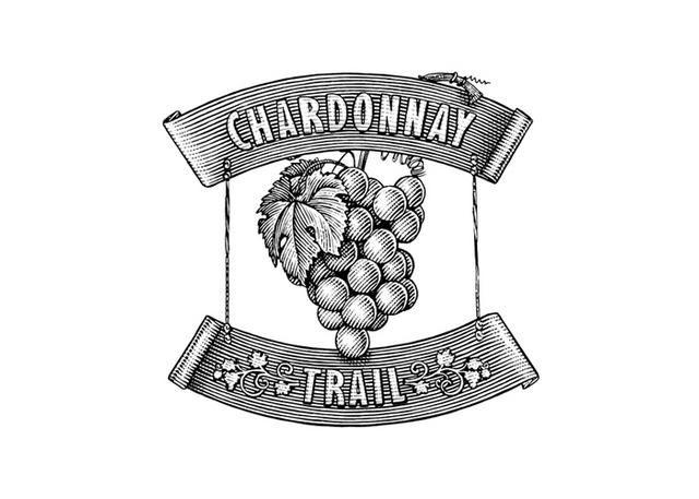 Steven Noble Illustrations: Terlato Grape logo
