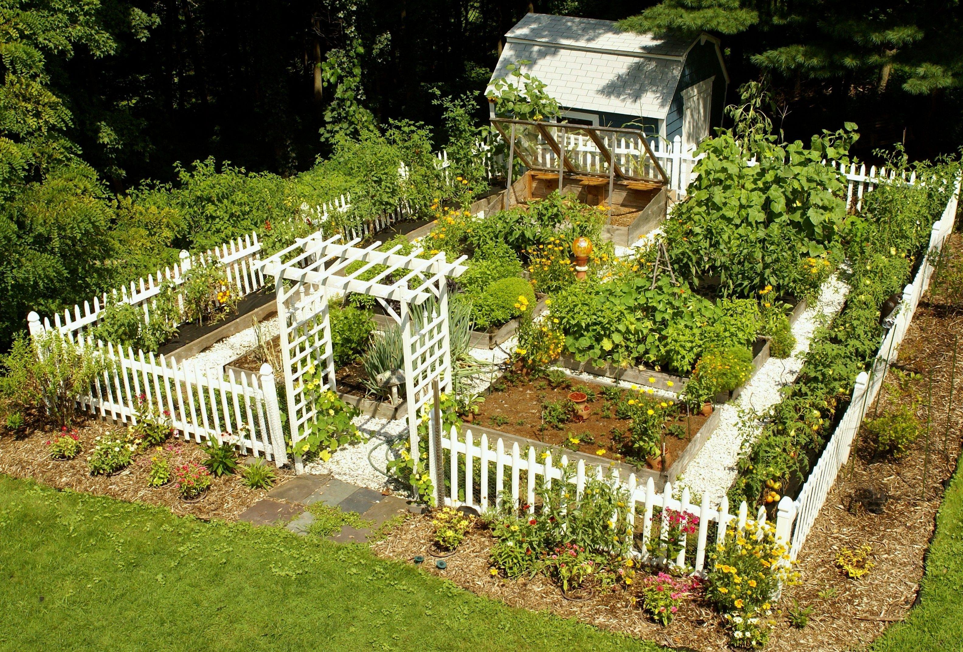 Home vegetable garden design  setting up a home vegetable garden vegetablegardening  Vegetable