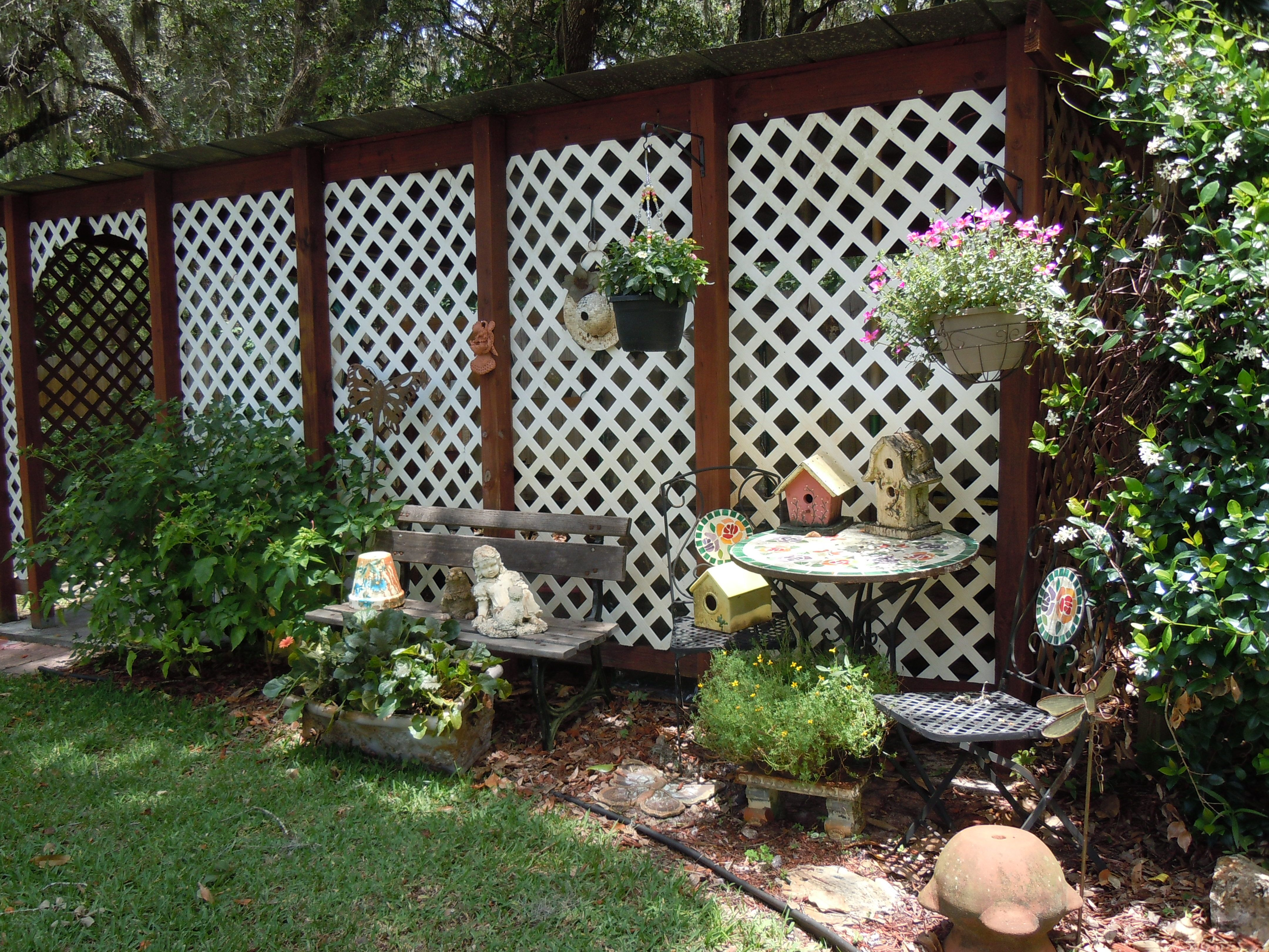 Back yard 'zen' garden.