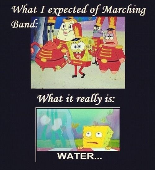 Funny Marching Spongebob Marching Band Memes Funny Band