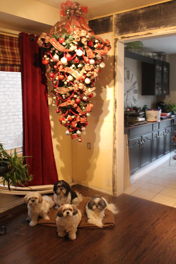 Upside Down Xmas Tree   Hanging christmas tree, Upside down christmas tree