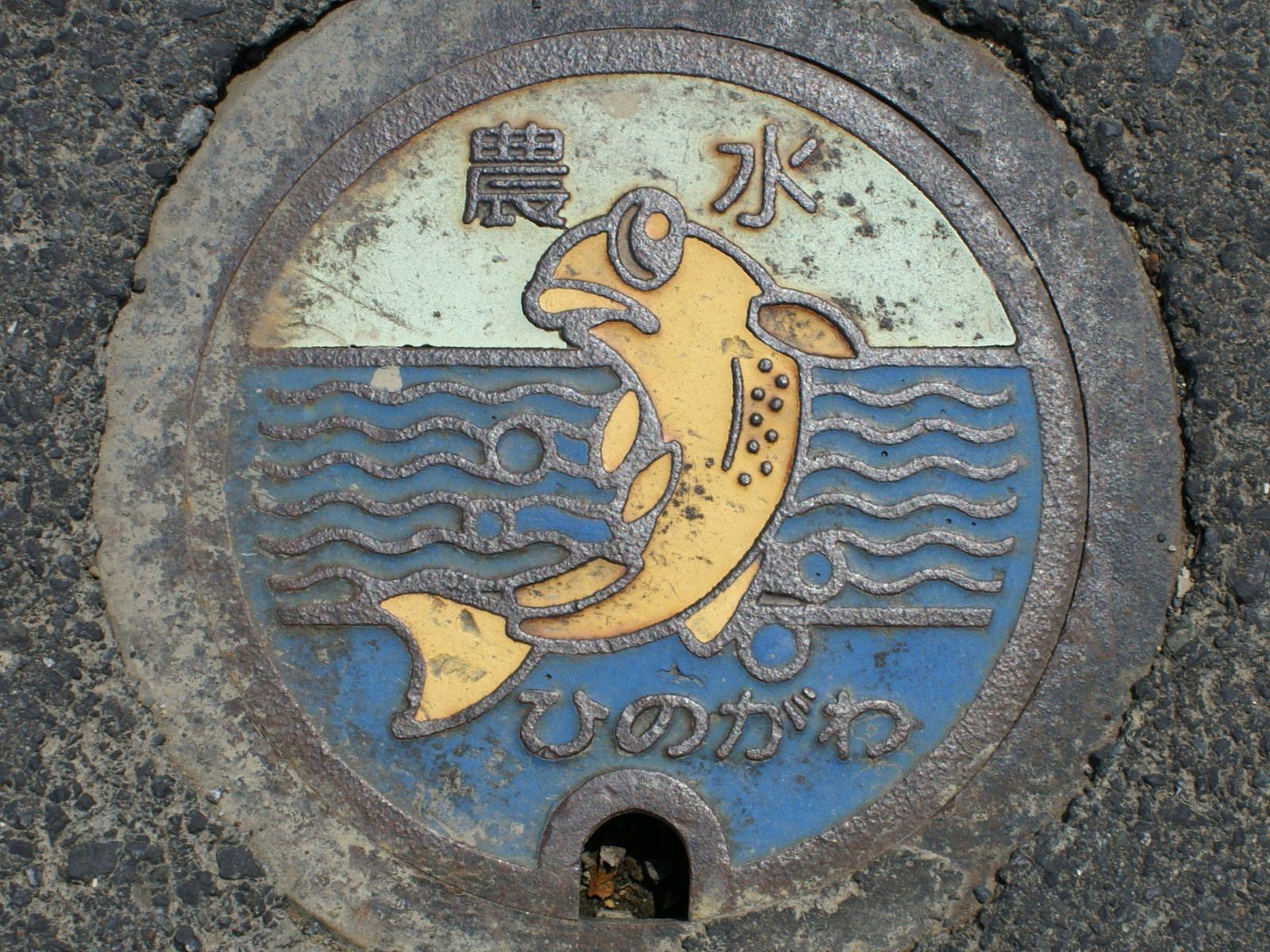 Fukui pref, manhole cover 2 (福井県日野川流域のマンホール2) | by MRSY